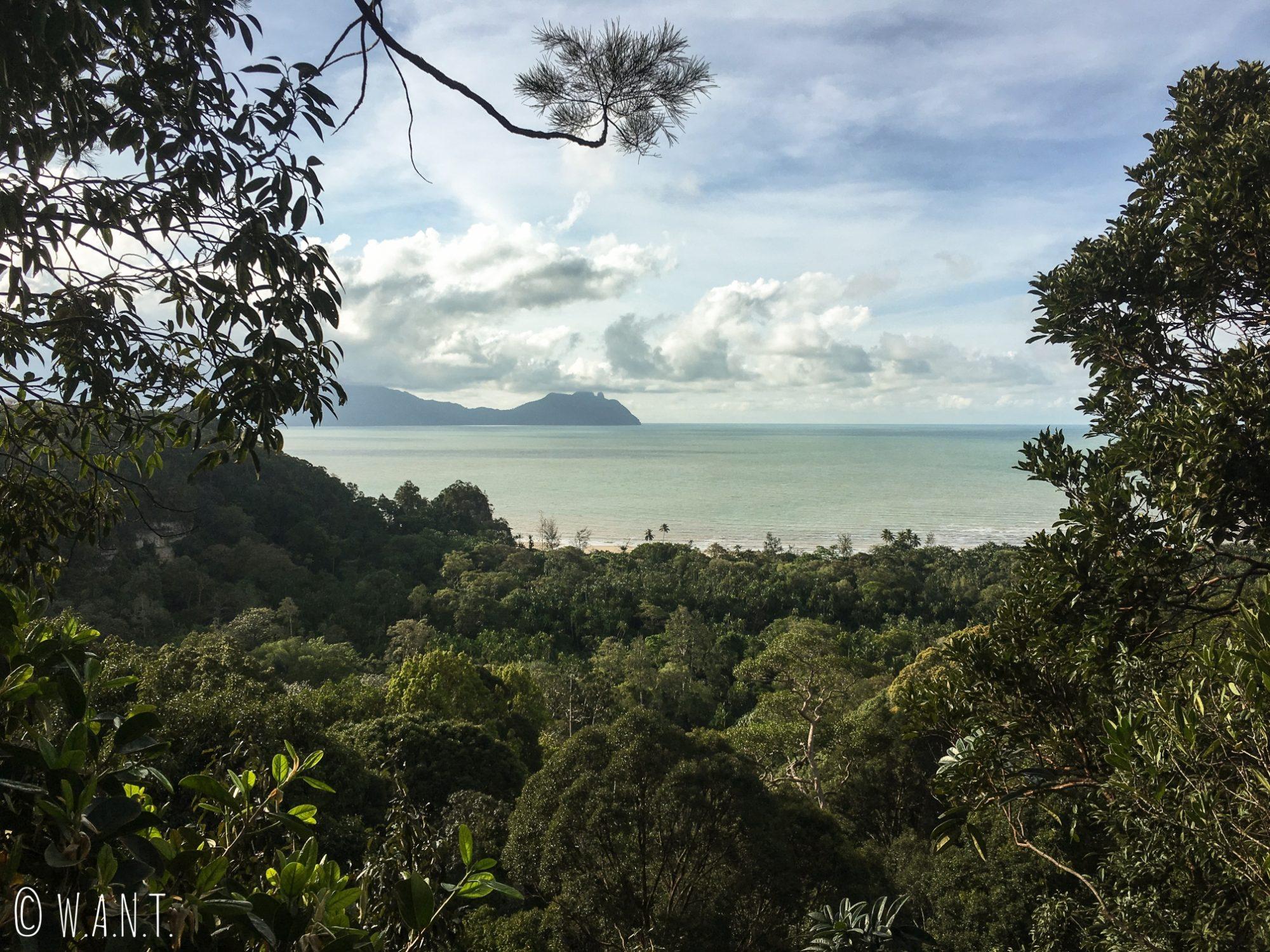 Vue au sommet du trail numéro 4 Ulu Assam du Bako National Park