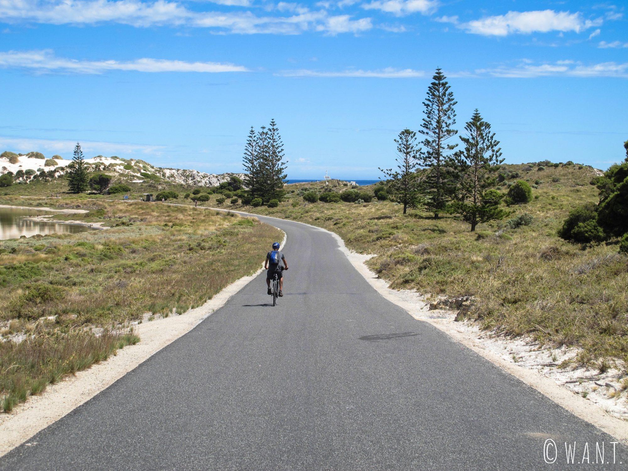 Benjamin en vélo à Rottnest Island