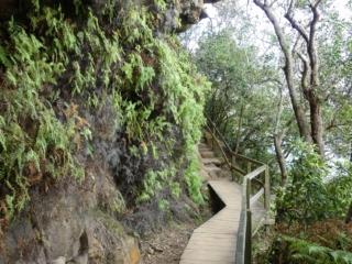 Chemin de la randonnée Manly Scenic Walkway