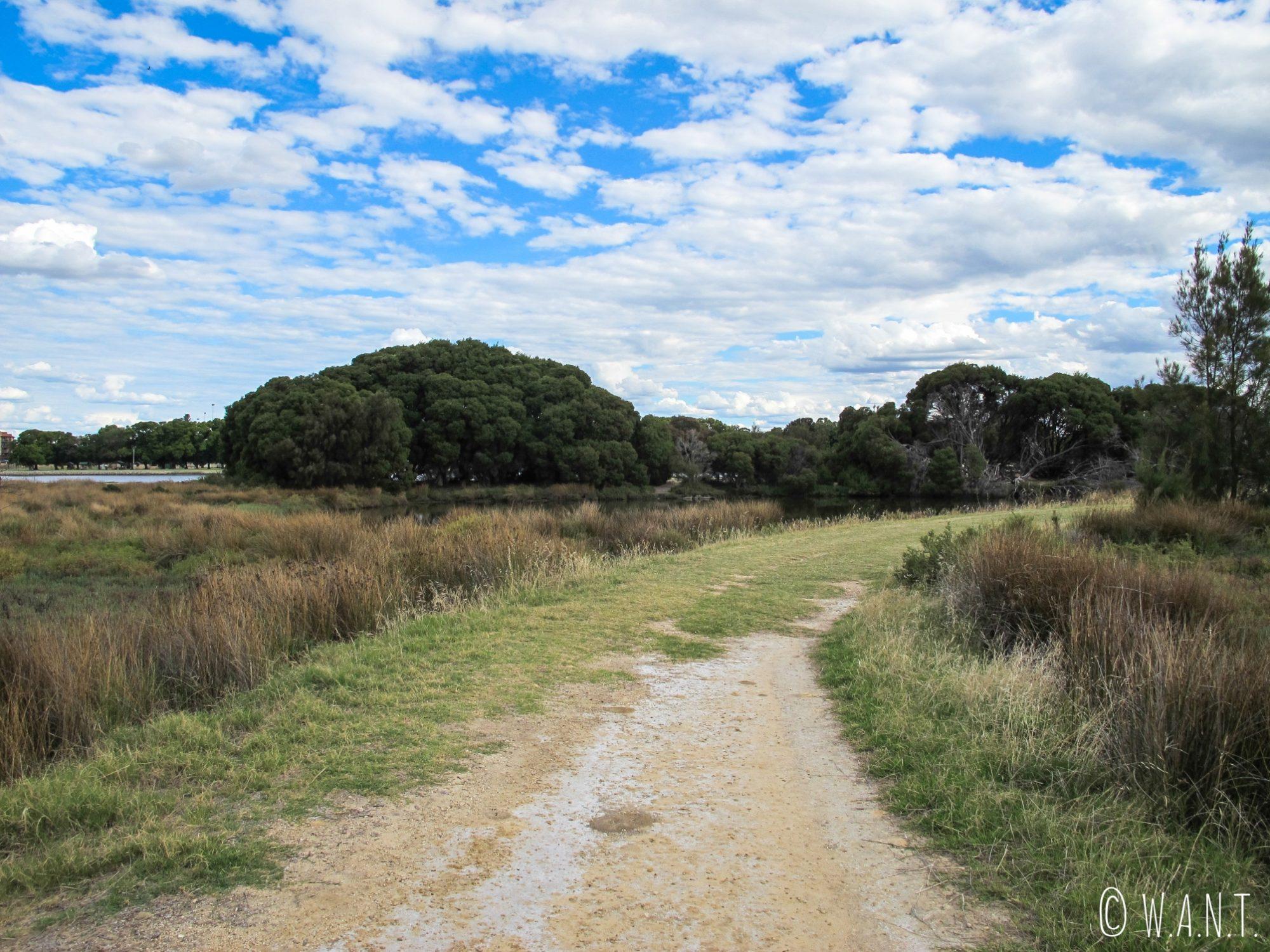 Chemin de promenade dans le parc d'Heirisson Island à Perth