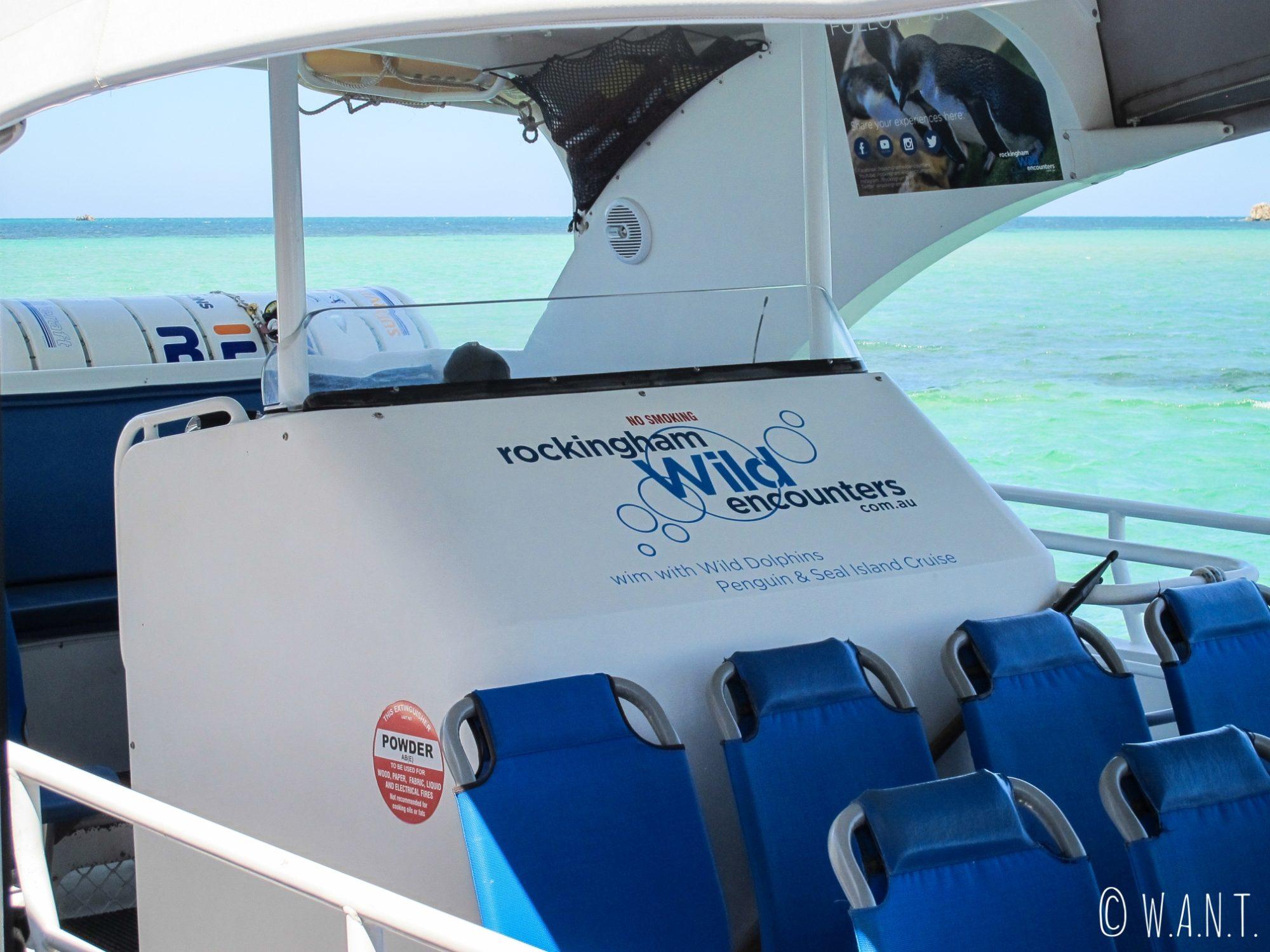Croisière Dolphin, Penguin & Sea Lion Cruise à Penguin Island