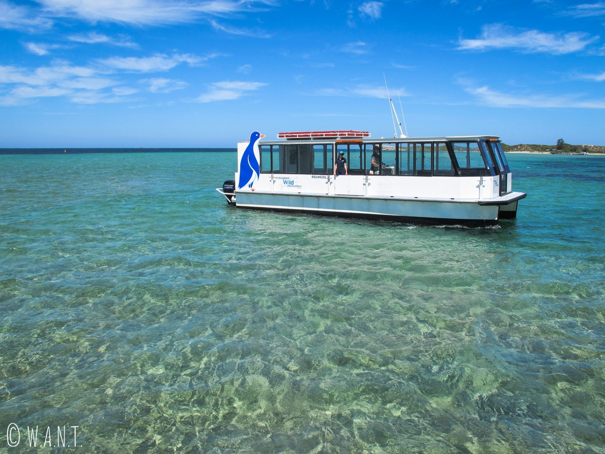 Ferry permettant de rejoindre Penguin Island