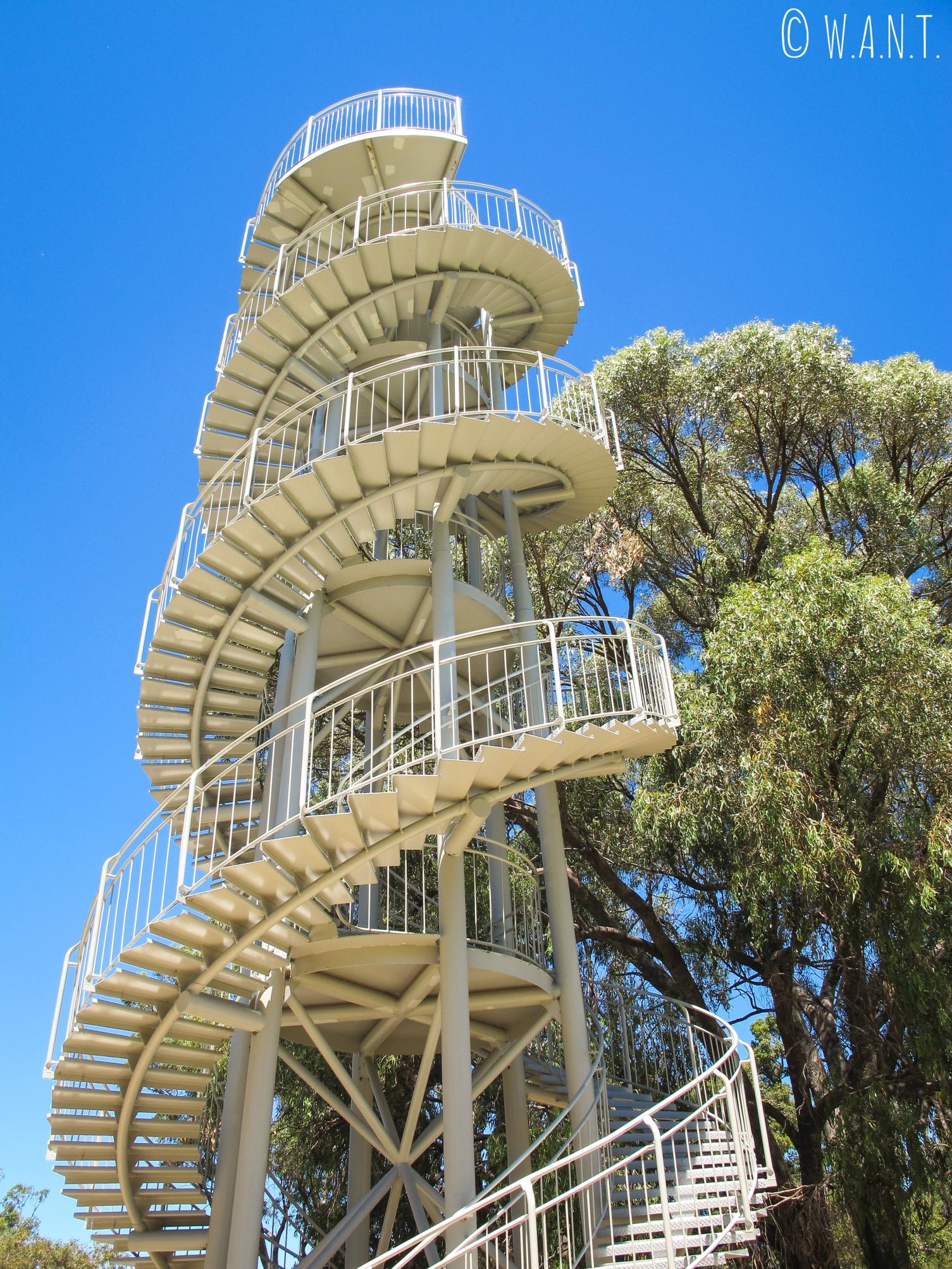 La Tour ADN, au coeur du Kings Park de Perth, offre une vue à 360 degrés de ce gigantesque parc