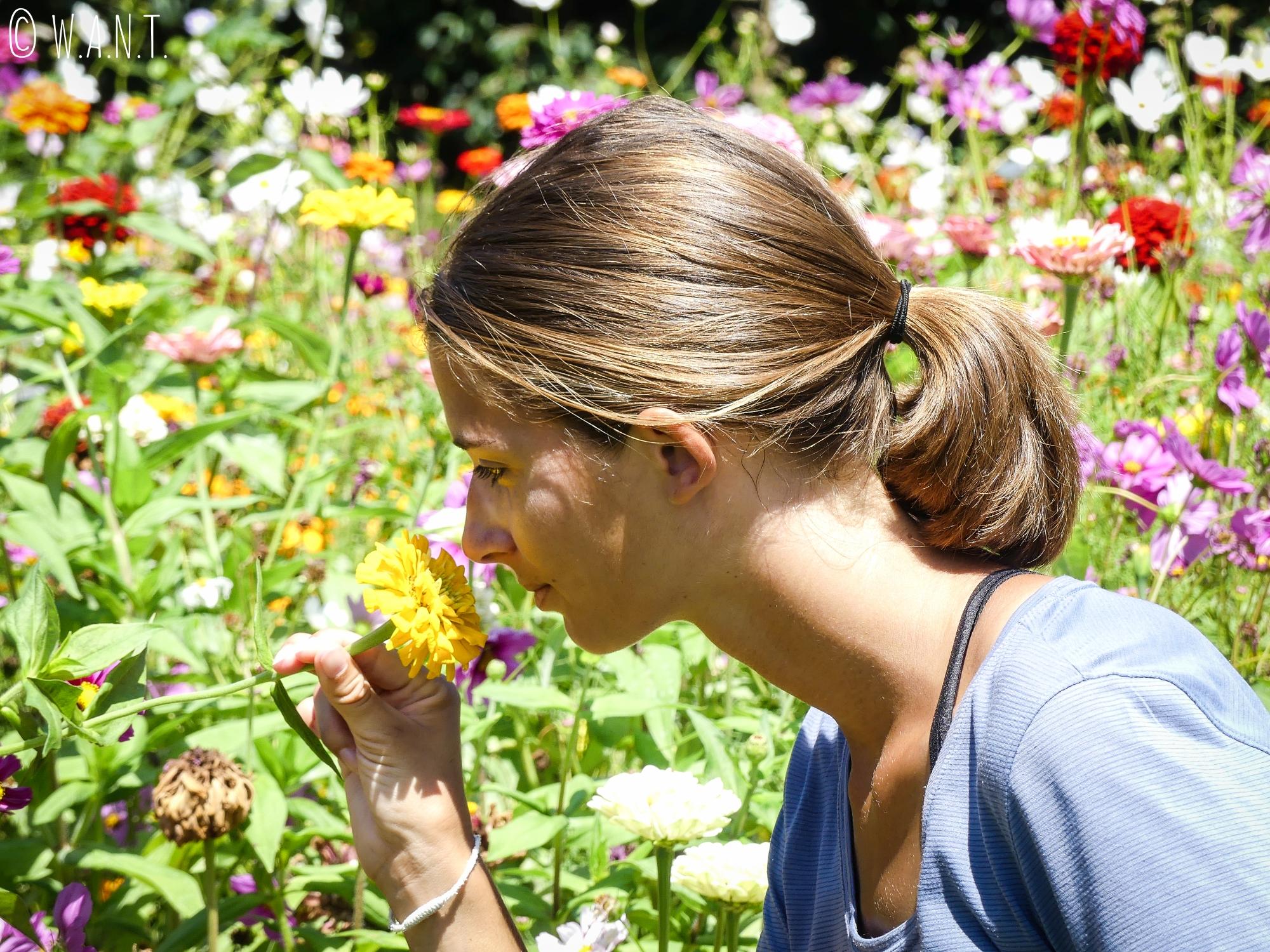 Marion au milieu des fleurs du Royal Botanic Garden de Sydney