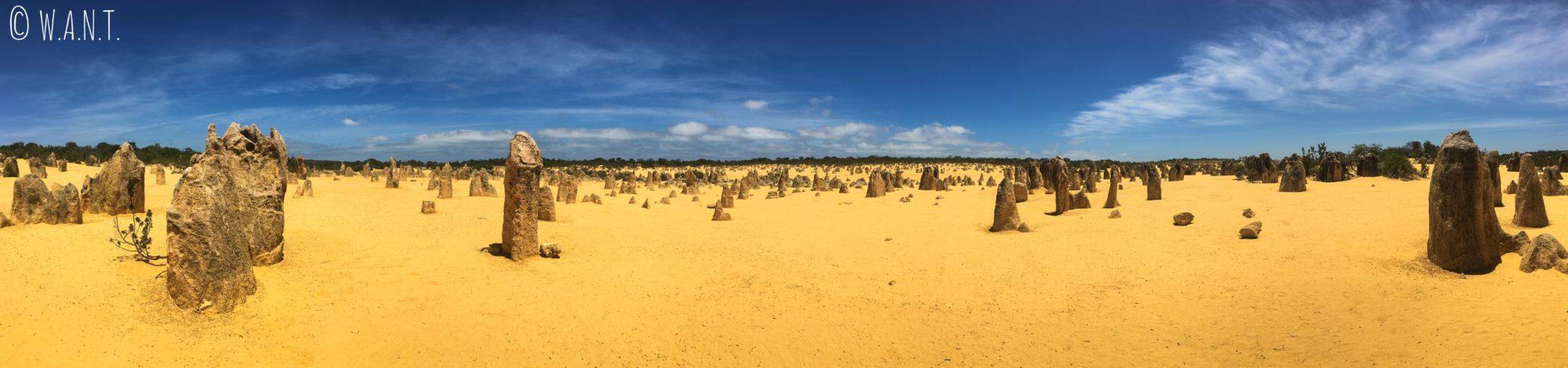 Panorama au milieu des Pinnacles près de Cervantes