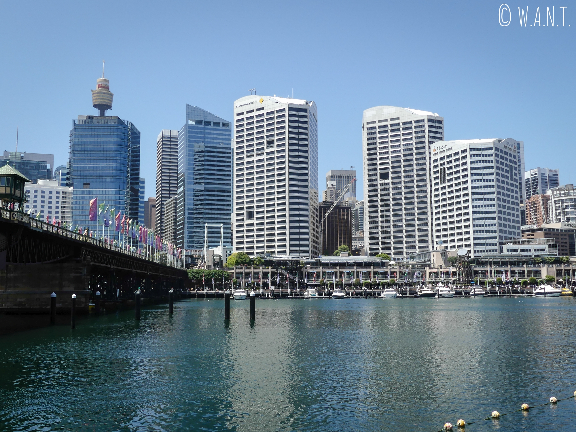 Skyline de Sydney depuis Darling Harbour