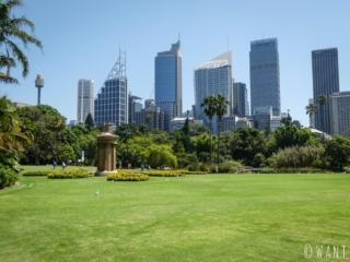 Skyline de Sydney depuis le Royal Botanic Garden