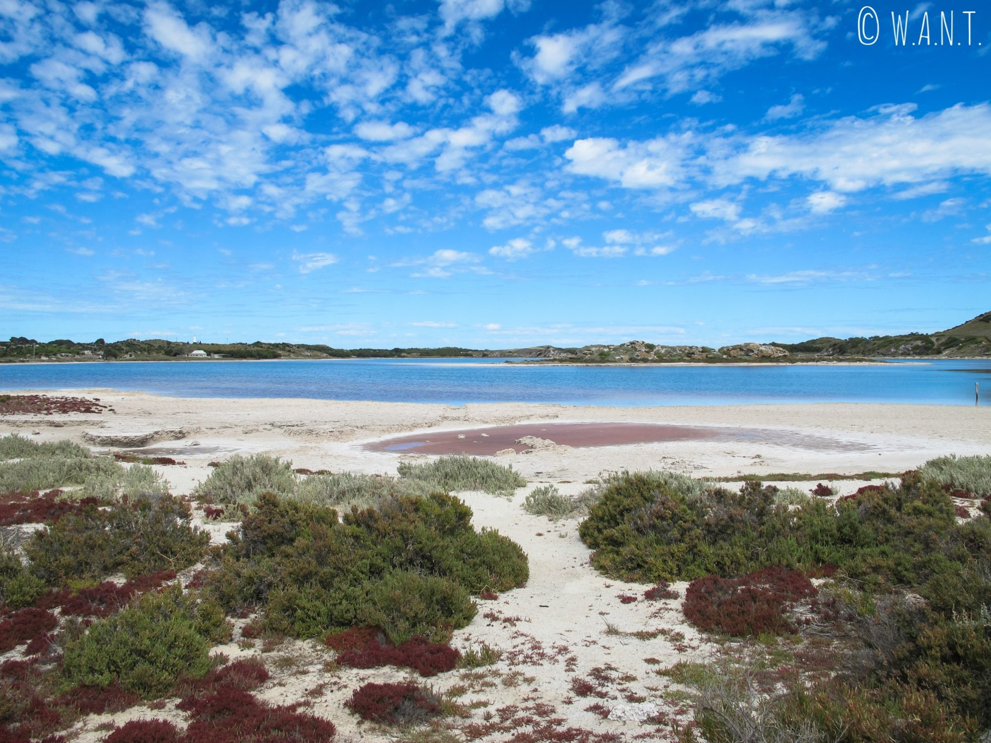 Superbe paysage au Pink Lake de Rottnest Island