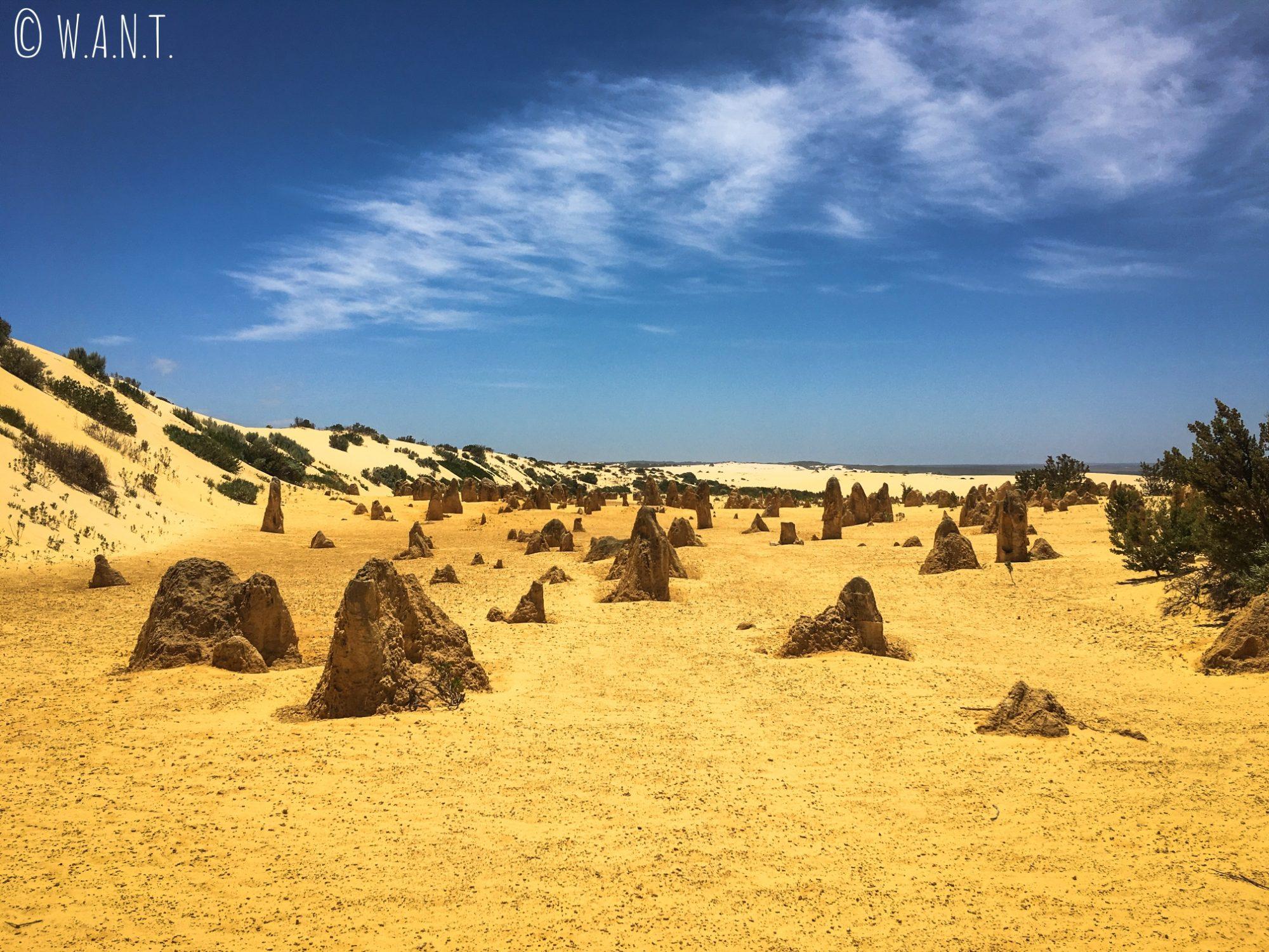 Superbe paysage des Pinnacles près de Cervantes