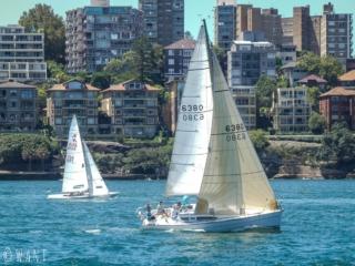 Voilier dans la baie de Sydney