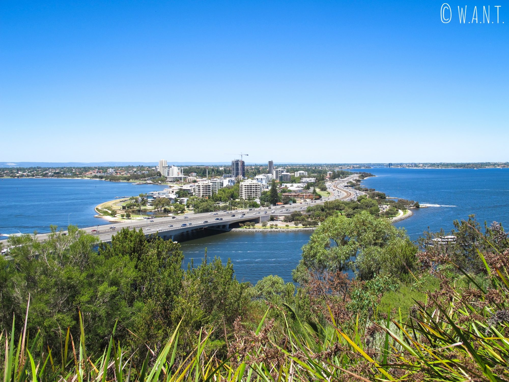 Vue sur Mill Point depuis les hauteurs du Kings Park de Perth