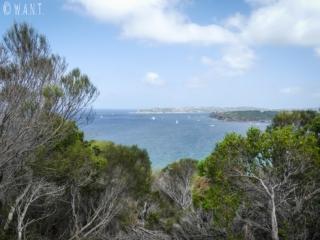 Vue sur Watsons Bay depuis la randonnée Manly Scenic Walkway près de Sydney