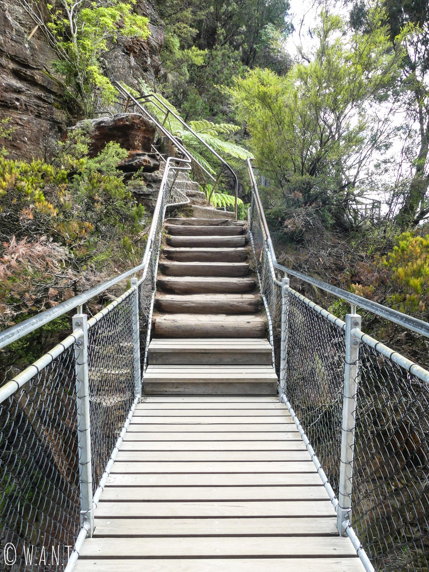 Il n'est pas rare de tomber sur des passerelles et escaliers lors d'une randonnée dans les Blue Mountains