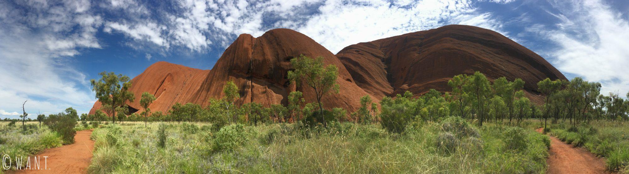La randonnée Uluru Base Walk nous permet de marcher autour du monolithe, en pleine végétation