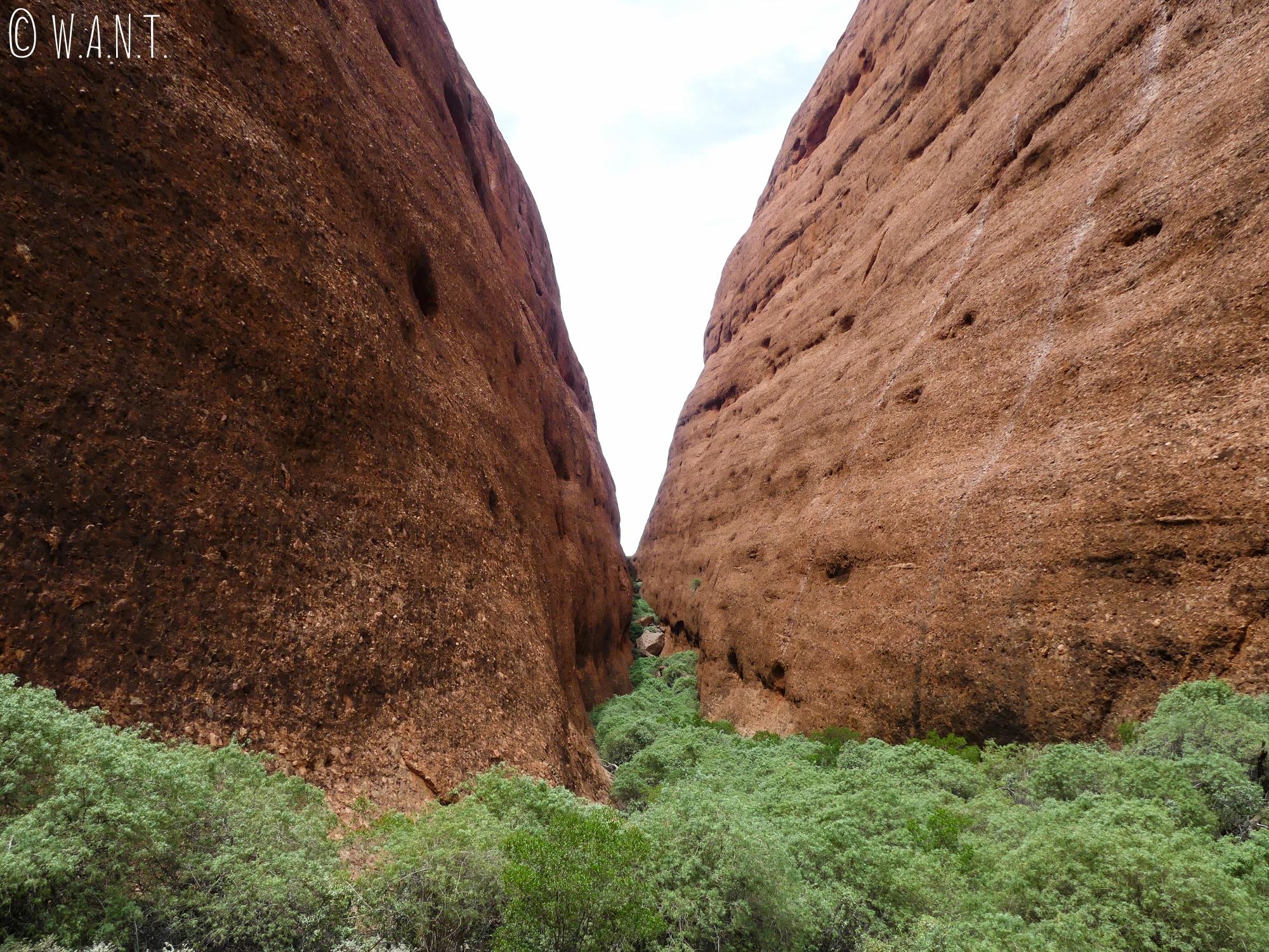 Le trail Walpa Gorge dans le parc national Uluru-Kata Tjuta permet d'accéder à ce point de vue