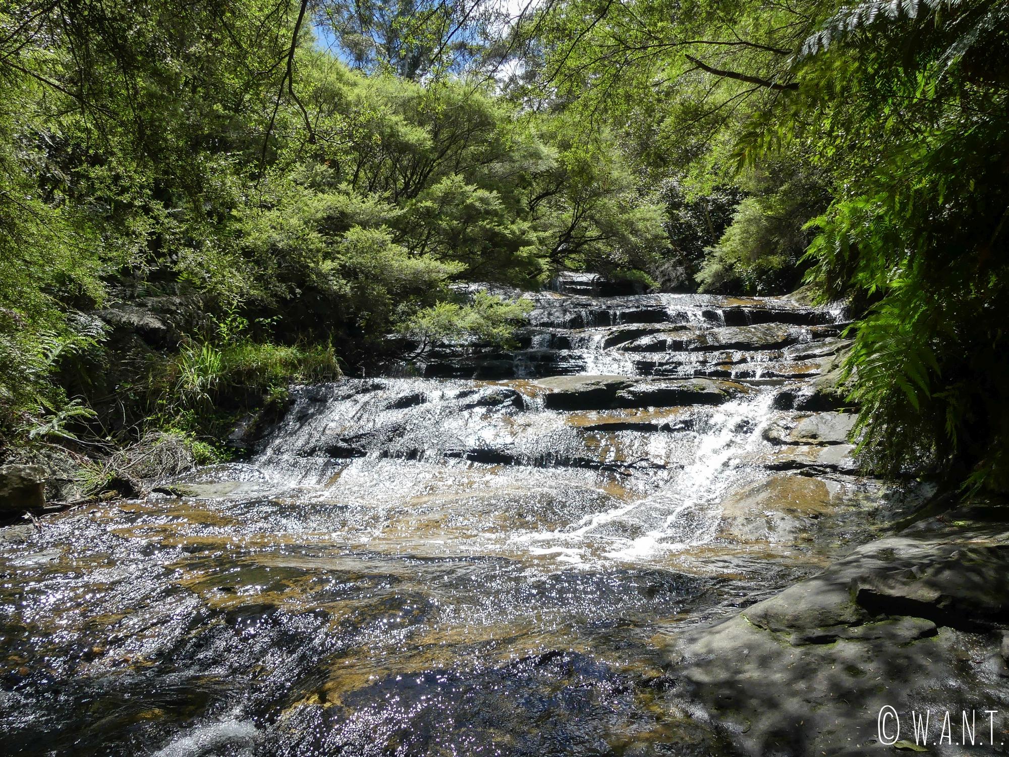 Le parc national de Blue Mountains est également réputé pour ses cascades