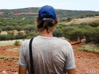 Les mouches nous ont accompagnées durant tout notre séjour au parc national Uluru-Kata Tjuta
