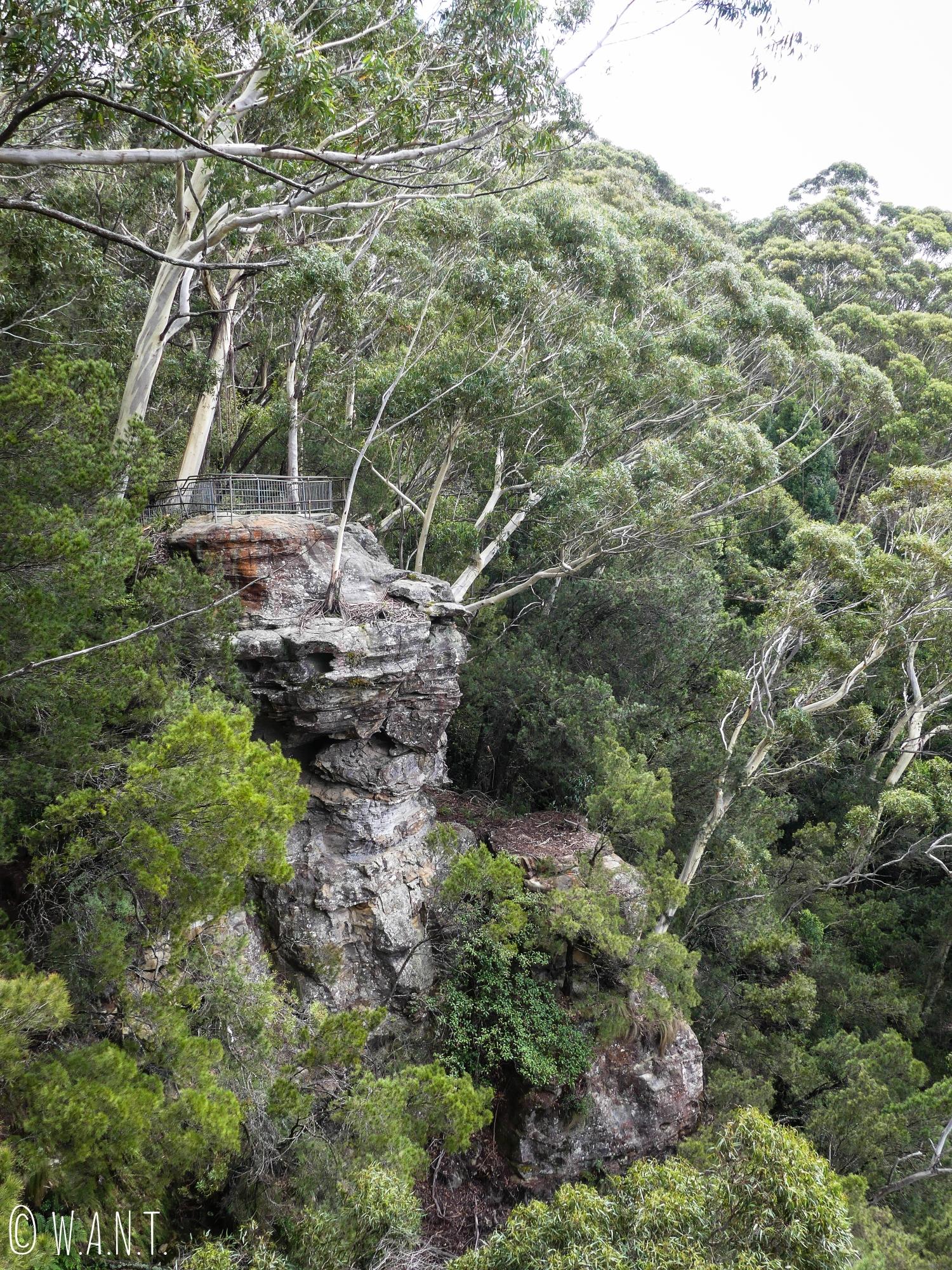 L'un des multiples points de vue sur le trail du Prince Henry Cliff Walk, dans les Blue Mountains