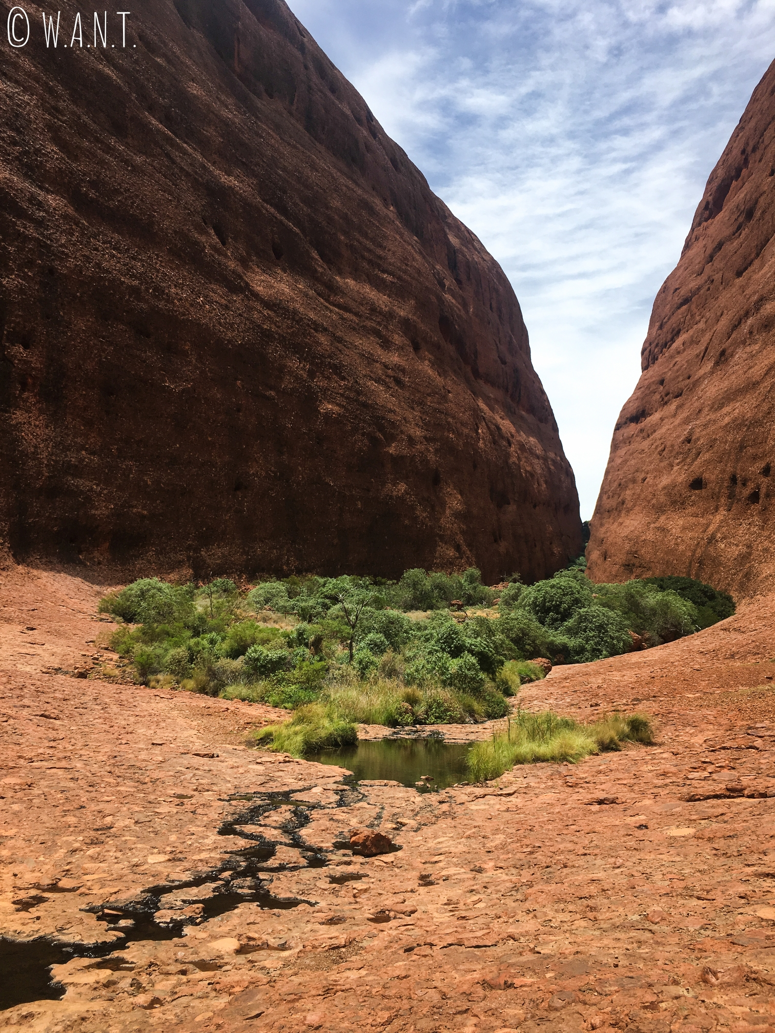 Paysage de la randonnée Walpa Gorge dans le parc national Uluru-Kata Tjuta