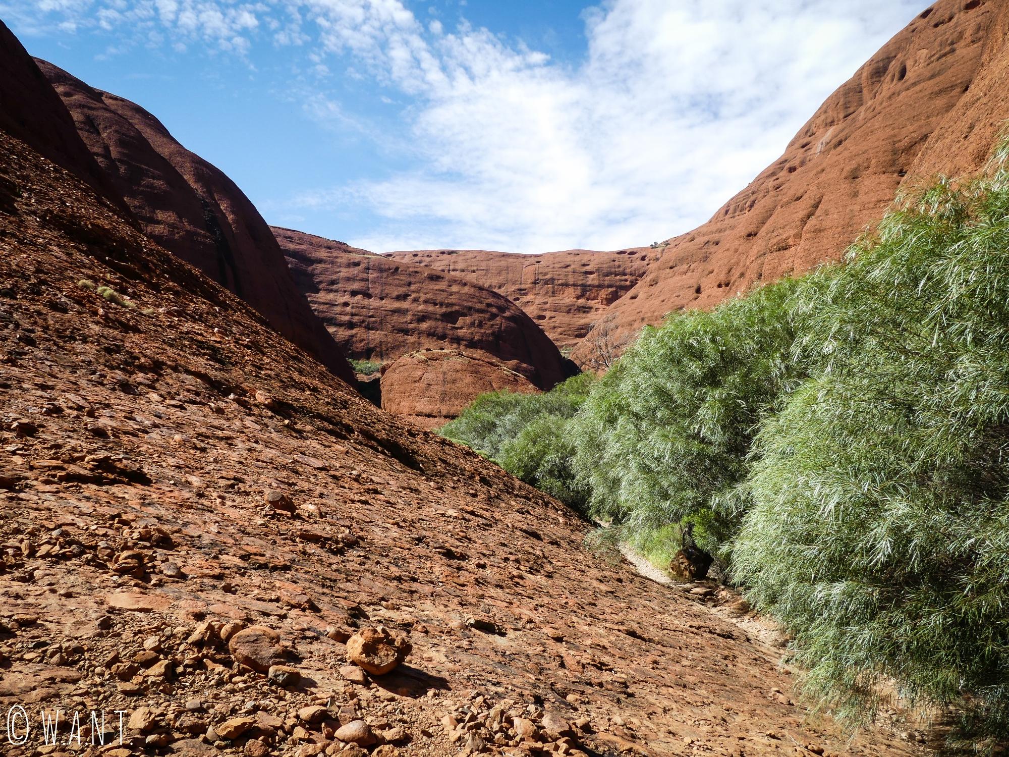 Paysage lunaire sur la randonnée Valley of the Winds Walk du parc national Uluru-Kata Tjuta