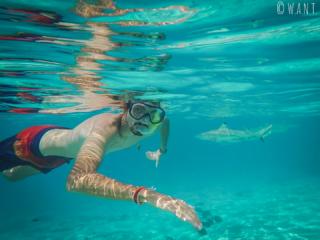 Benjamin plonge avec les requins dans le lagon de l'île de Moorea