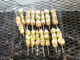 Brochettes de poulet et de thon sur le feu