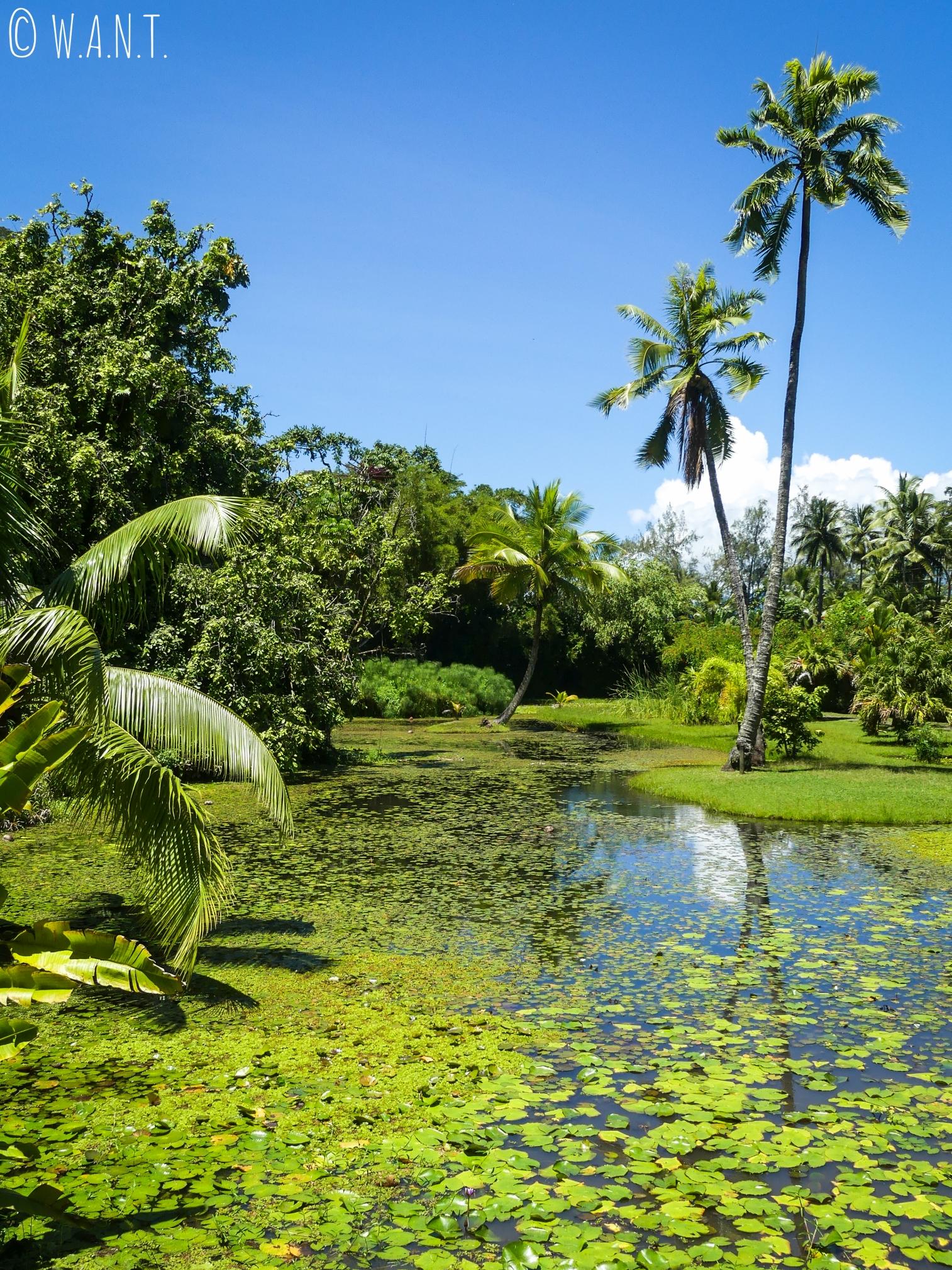 Jardin d'eau de Vaipahi sur l'île de Tahiti