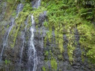 La cascade de Vaimahutu est l'une des trois cascades de Faarumai sur l'île de Tahiti