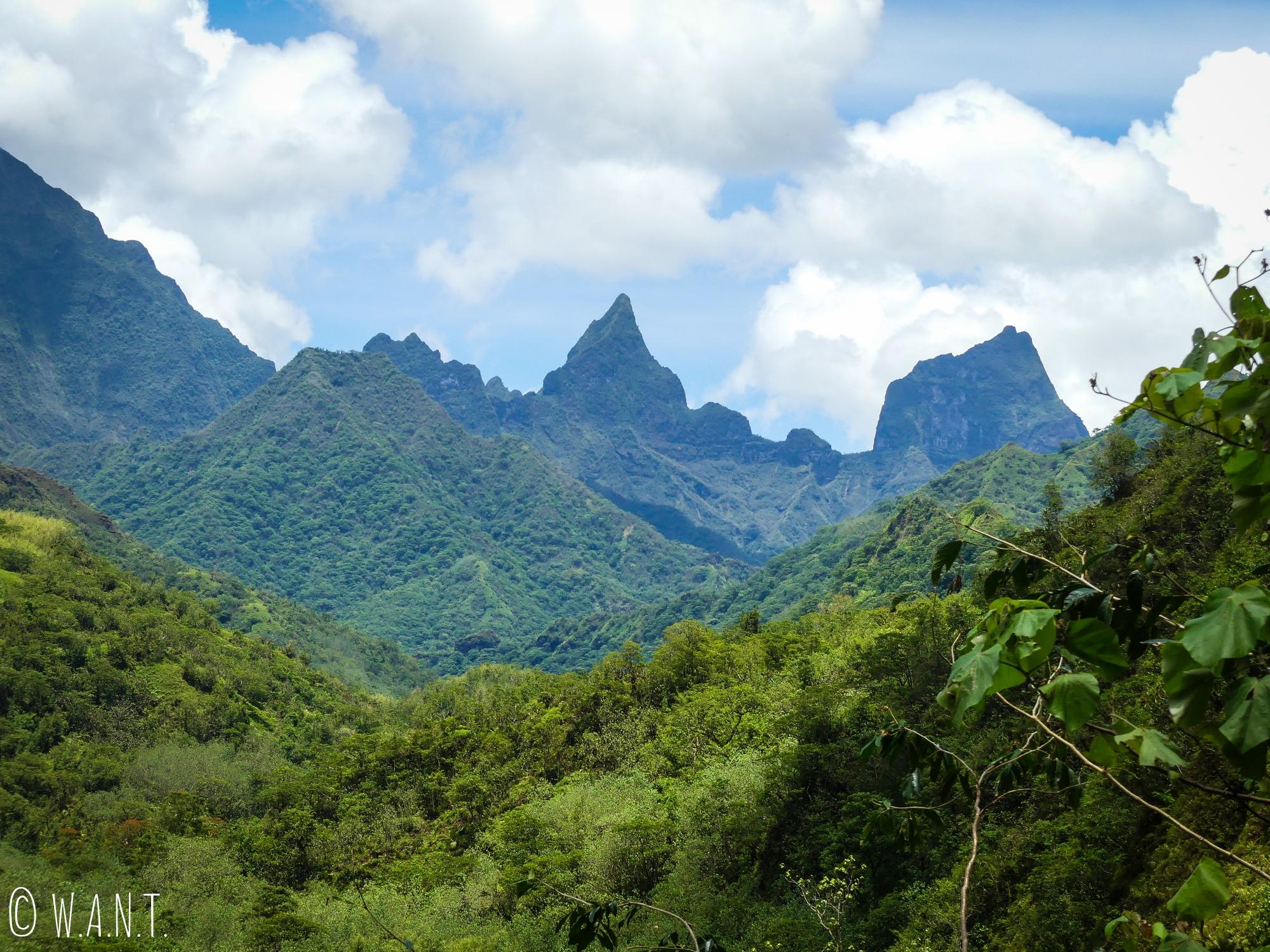Les sommets sont abruptes dans la vallée de la Papenoo sur l'île de Tahiti