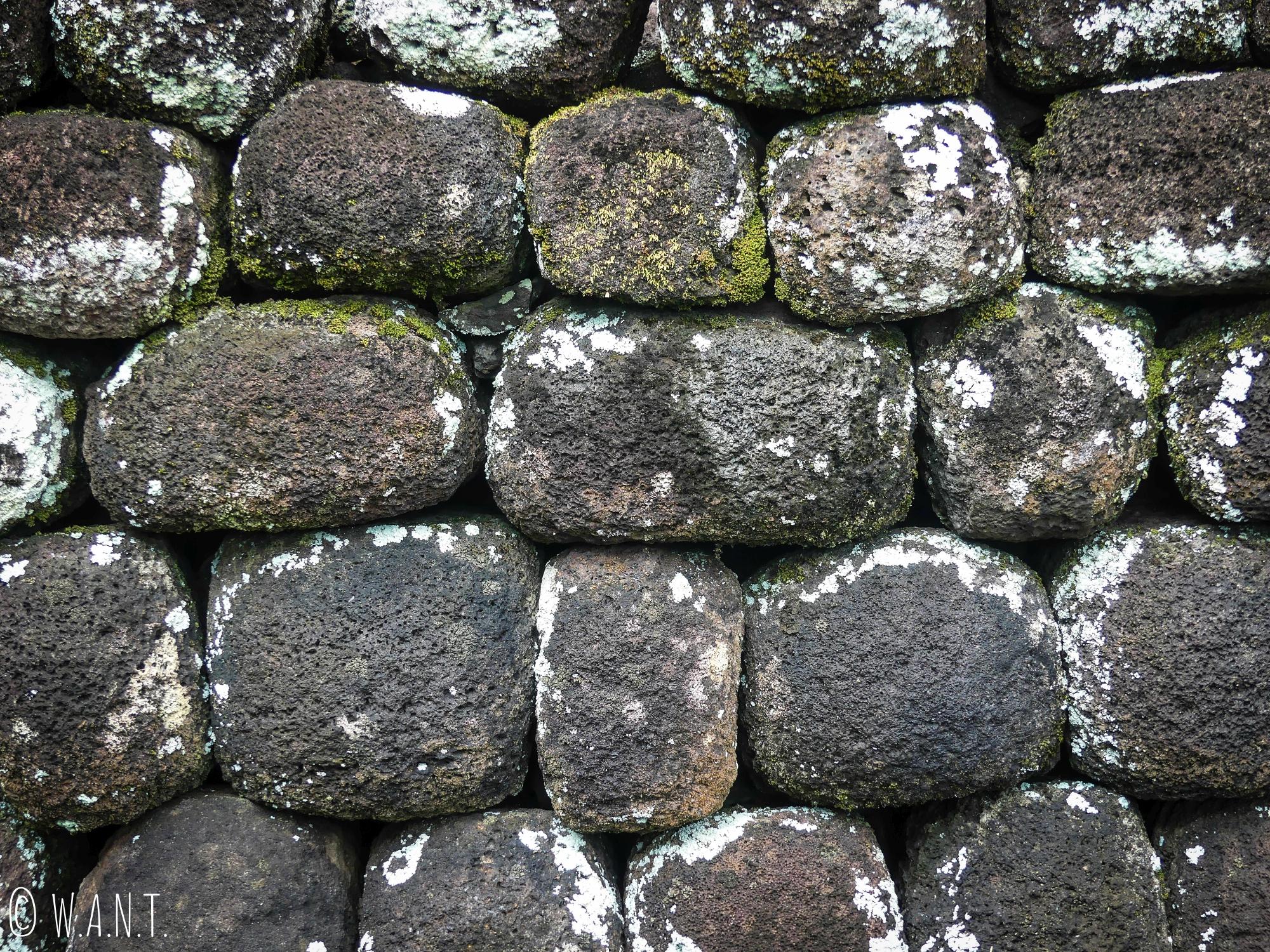 Mur de pierres au Marae 'Arahurahu de Tahiti