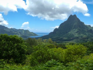 Panorama sur les baies de Cook et de Opunohu sur l'île de Moorea