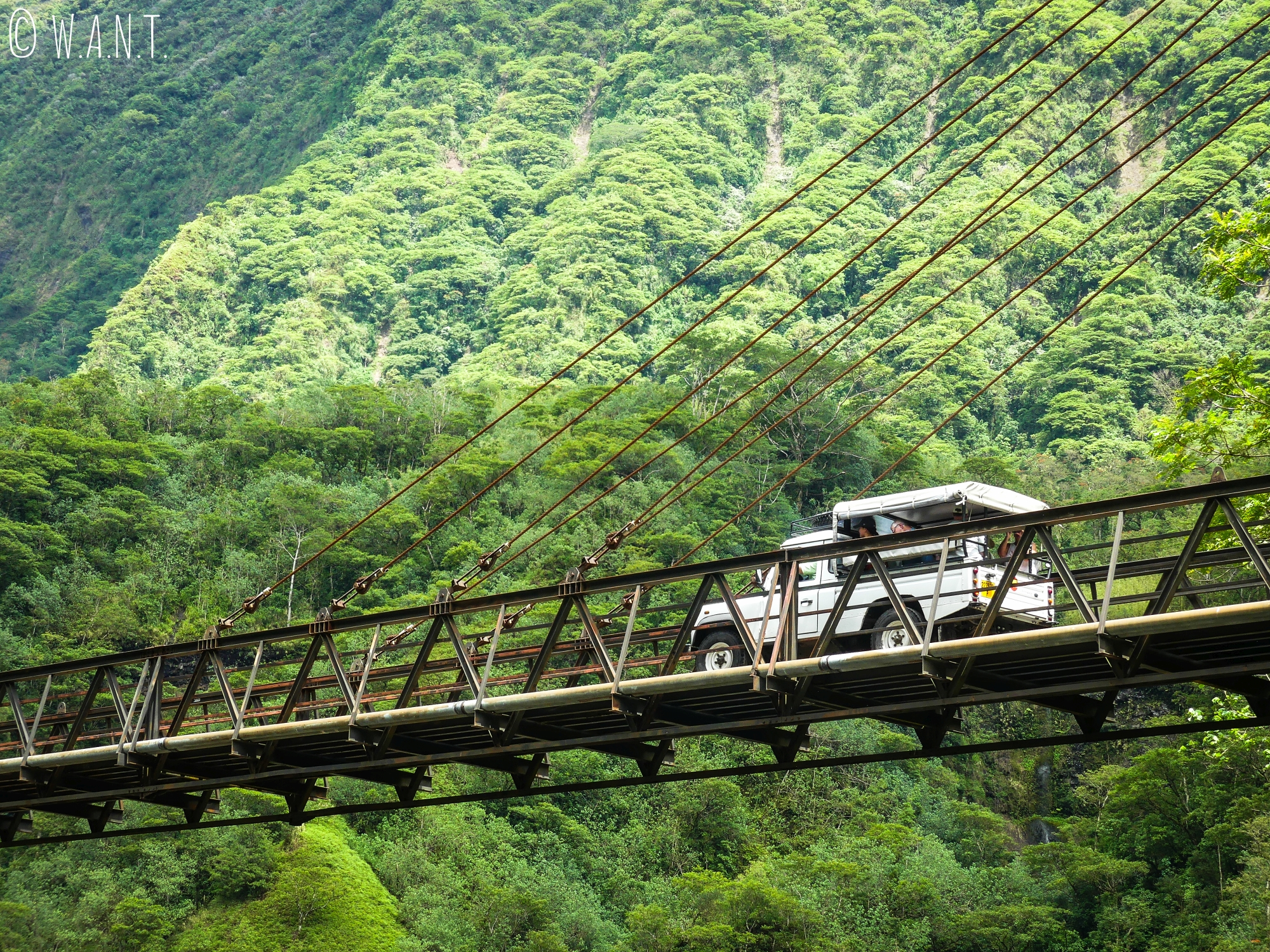 Pick-up dans la vallée de la Papenoo sur l'île de Tahiti