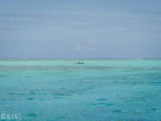 Rameur de Va'a sur le lagon de l'île de Moorea