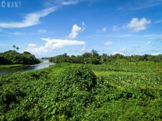 Végétation luxuriante sur la péninsule Tahiti Iti, en allant à Tautira
