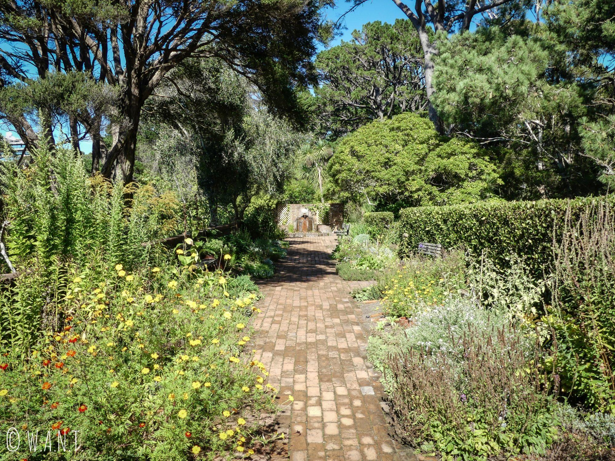 Allée du jardin botanique de Wellington