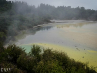 C'est en prenant de la hauteur que l'on peut admirer l'artist's palette du site de Wai-O-Tapu en Nouvelle-Zélande