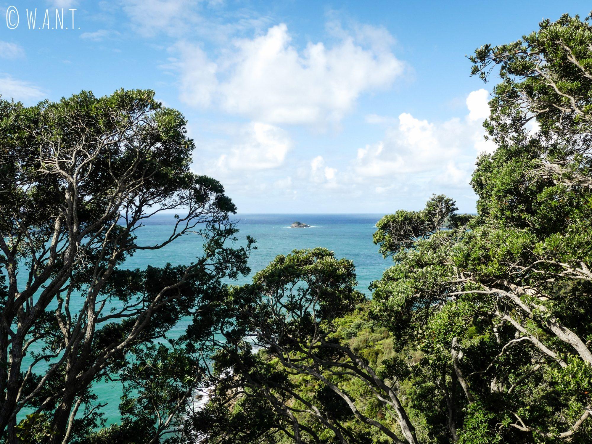 La promenade qui relie Hahei à Cathedral Cove, en Nouvelle-Zélande, est superbe