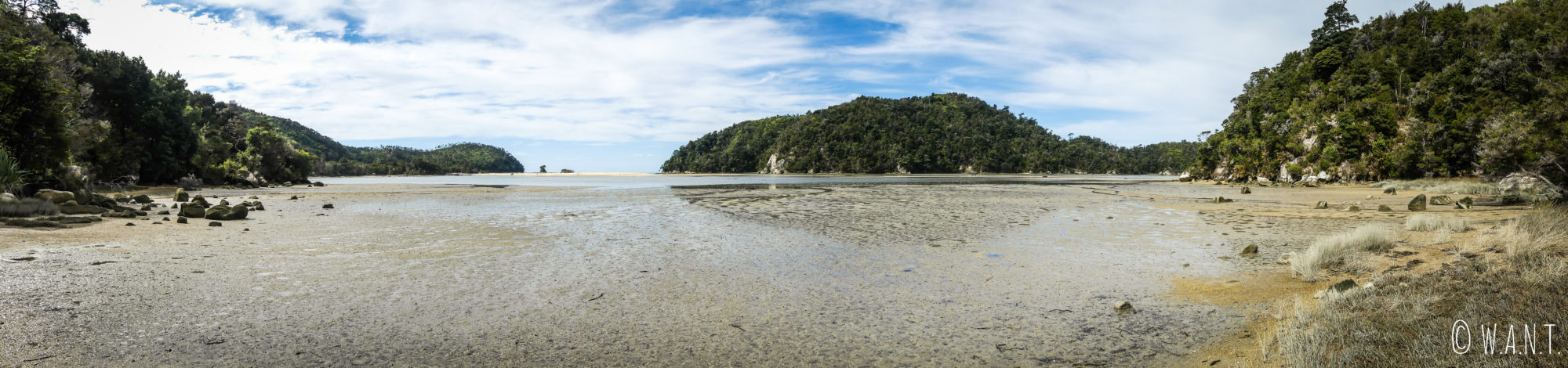 Marée basse au parc national Abel Tasman en Nouvelle-Zélande