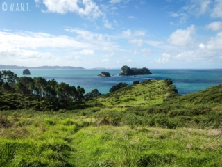 Panorama visible sur la promenade qui relie Hahei à Cathedral Cove en Nouvelle-Zélande