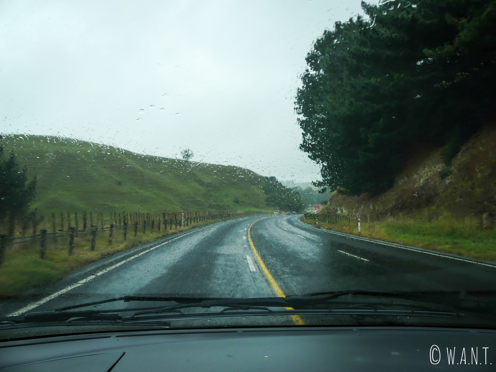 Route pluvieuse mais route heureuse en direction de Wellington, la capitale de la Nouvelle-Zélande