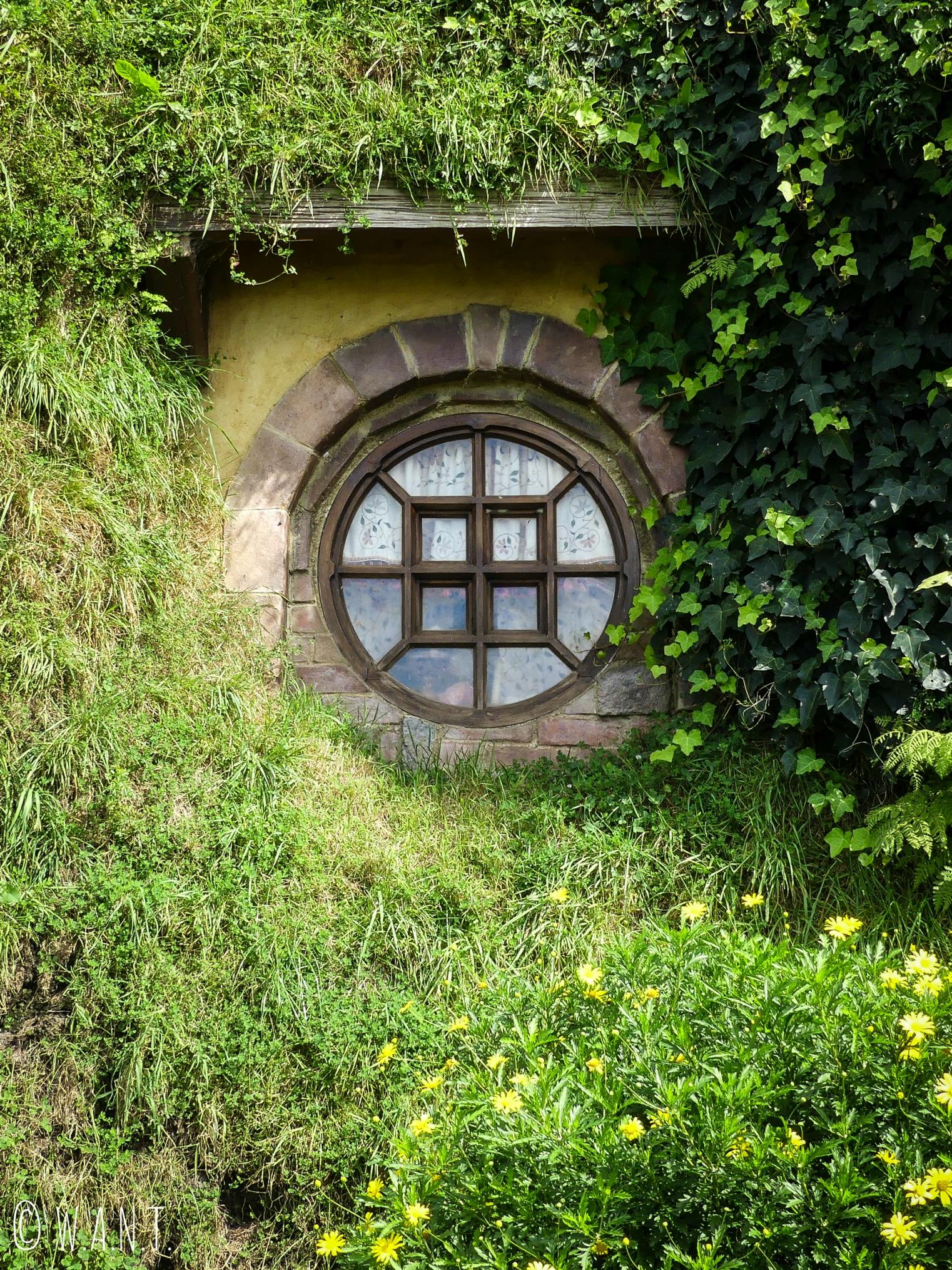 Y-aurait-il un petit hobbit qui nous observerait depuis la fenêtre de sa maison à Hobbiton en Nouvelle-Zélande