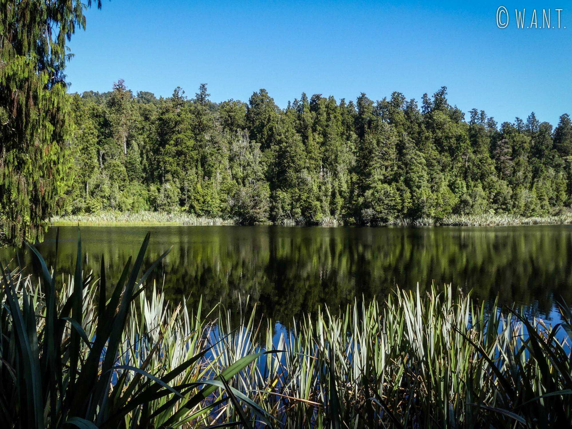 Le lac Matheson en Nouvelle-Zélande est réputé pour ses reflets incroyables sur l'eau