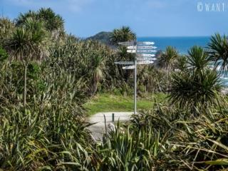 Tous les chemins mènent au voyage au Cape Foulwind en Nouvelle-Zélande