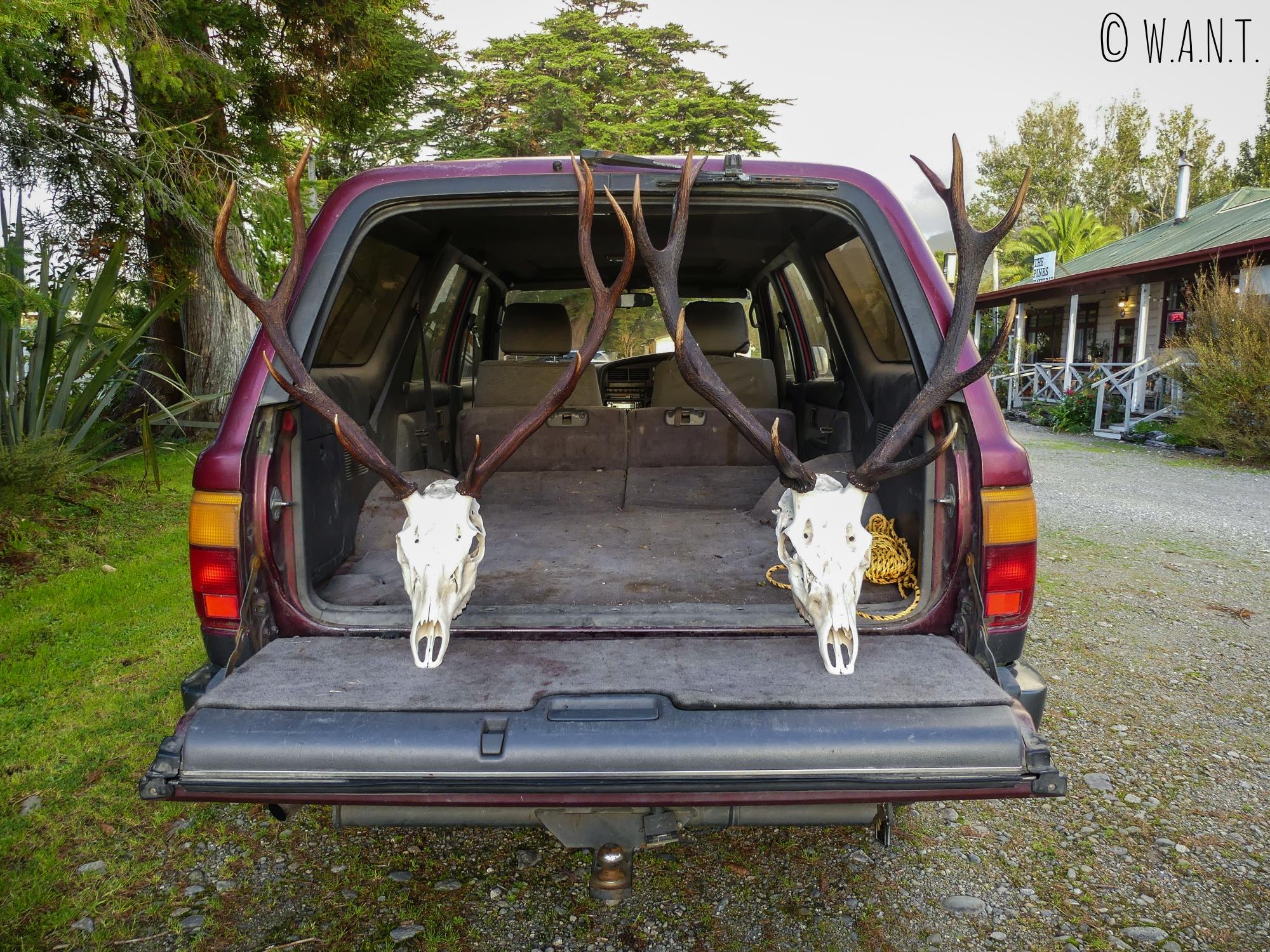 Rencontre avec Greg, un chasseur et habitant de Wesport en Nouvelle-Zélande