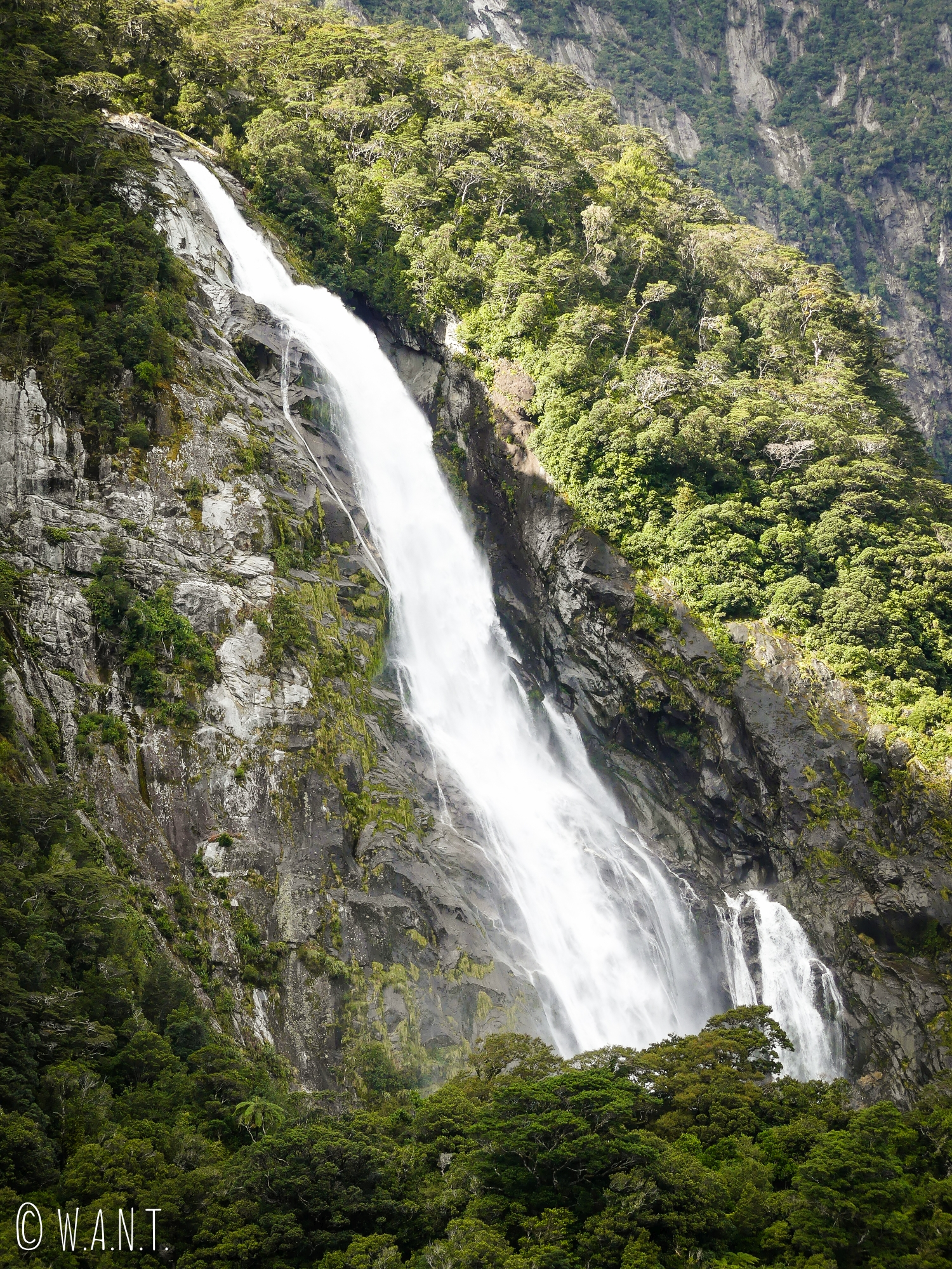 Il est impressionnant de voir l'eau dévaler la roche durant notre croisière sur le Milford Sound en Nouvelle-Zélande