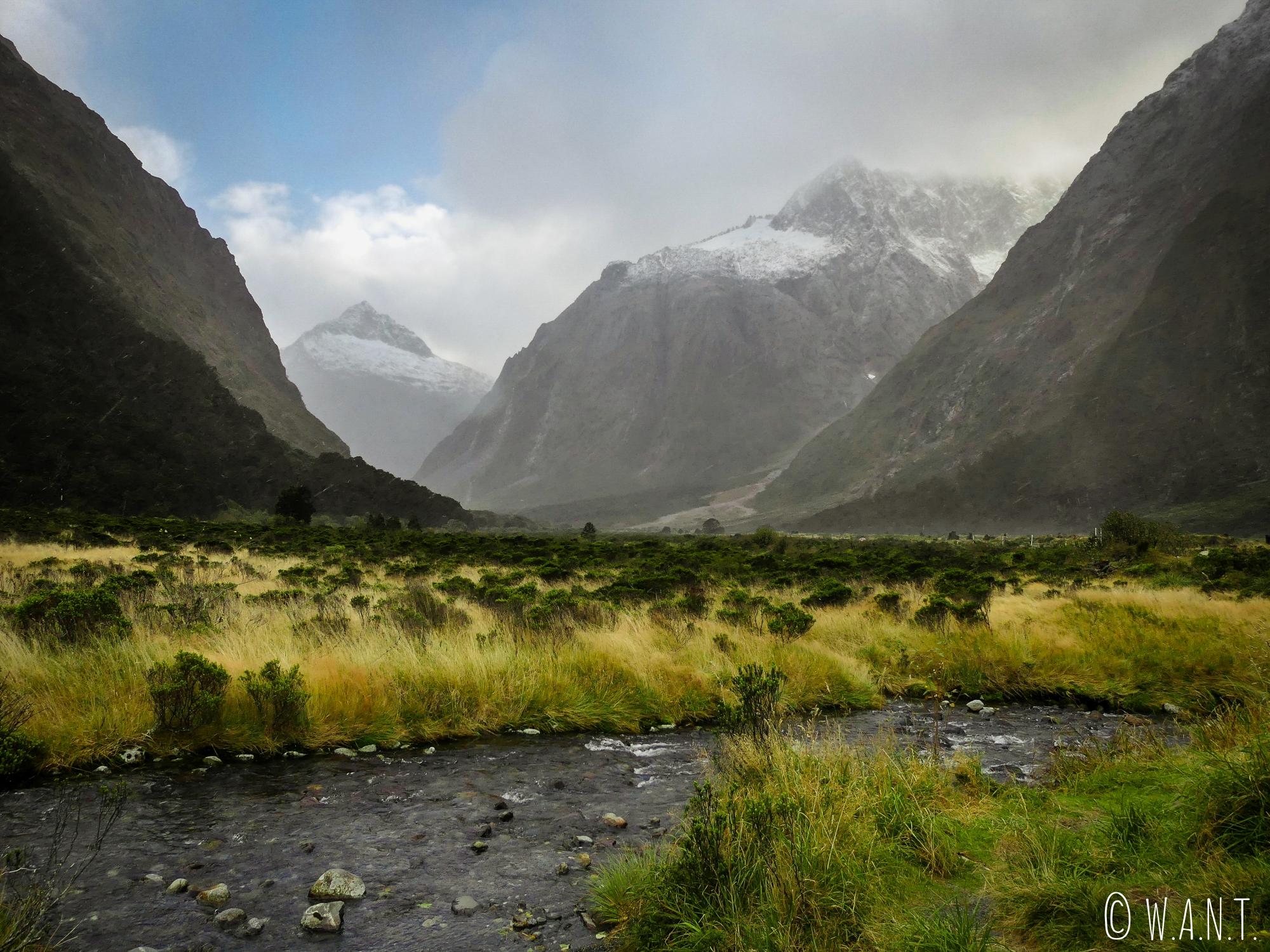 La brume rend le paysage mystique au Fiordland National Park en Nouvelle-Zélande