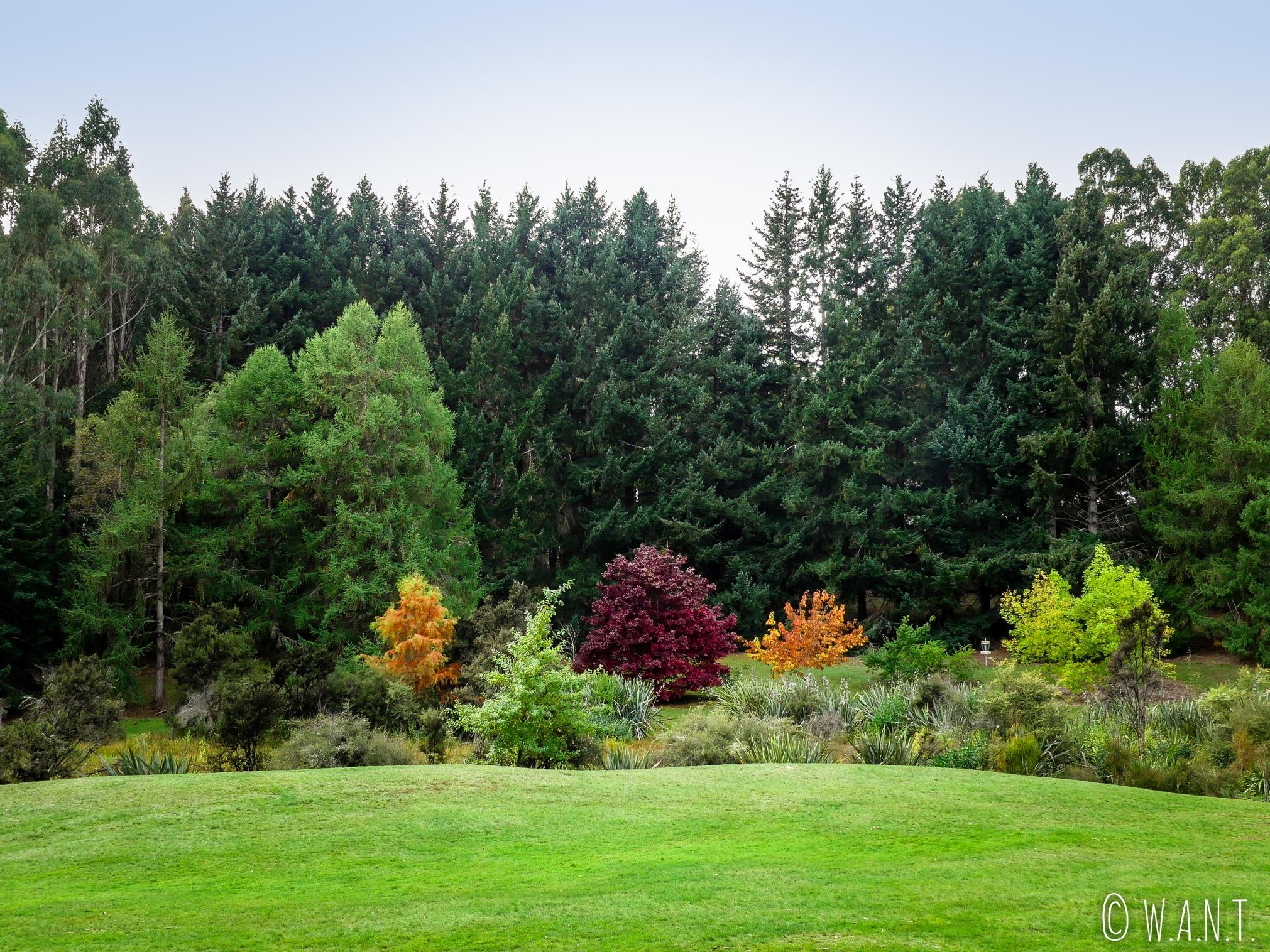 Le Ivon Wilson Park de Te Anau en Nouvelle-Zélande est un bel endroit où se promener
