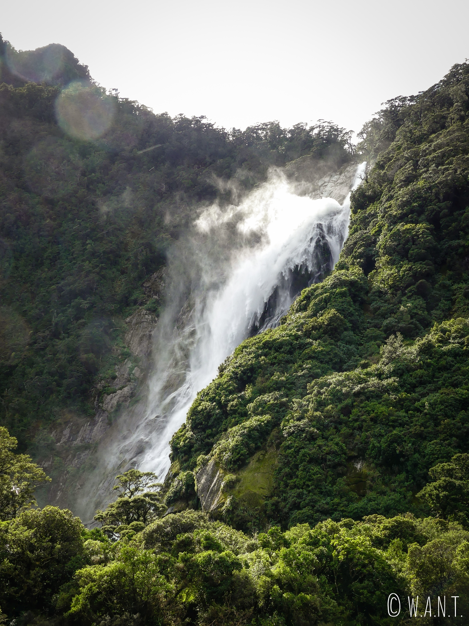 Notre bateau s'approche au plus près des cascades du Milford Sound en Nouvelle-Zélande
