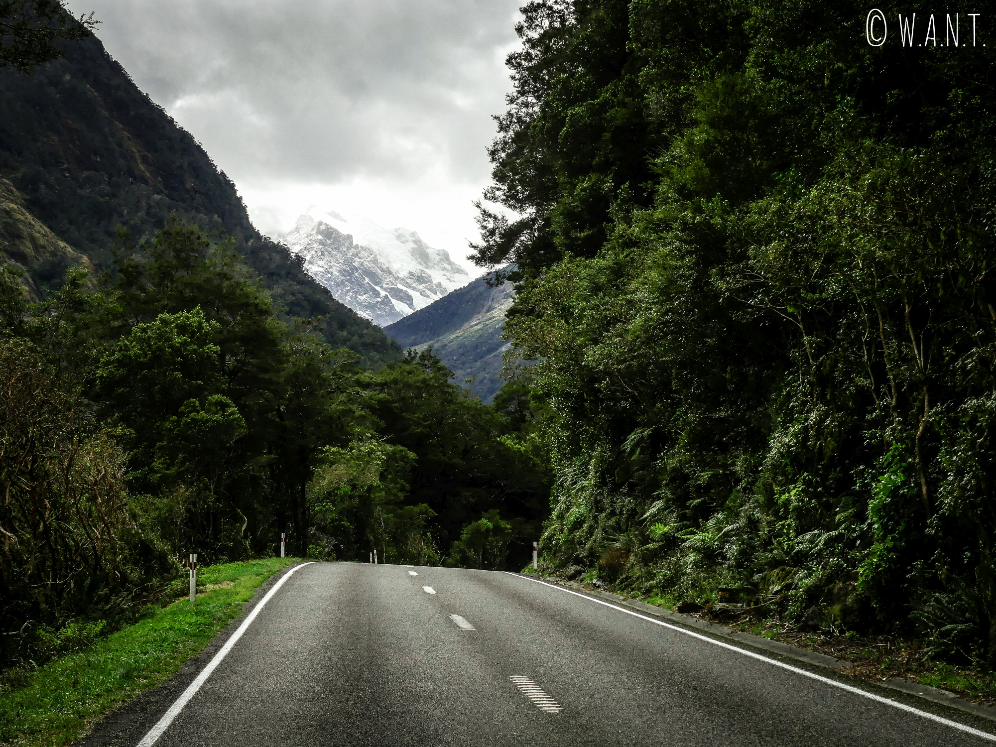 Nous reprenons la route pour quitter le Fiordland National Park en Nouvelle-Zélande