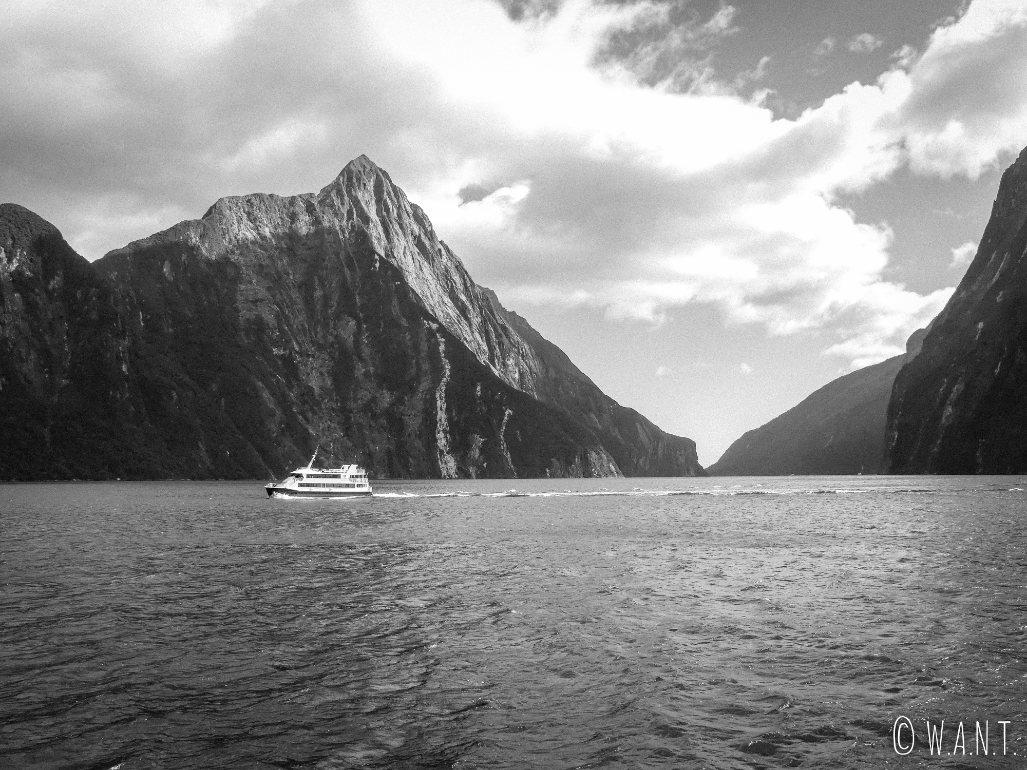 Plusieurs compagnies organisent des croisières sur le Milford Sound en Nouvelle-Zélande
